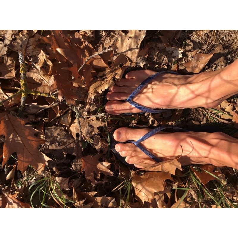Billede 1 af Barbara vedr. Havaianas - Slim - Sandaler