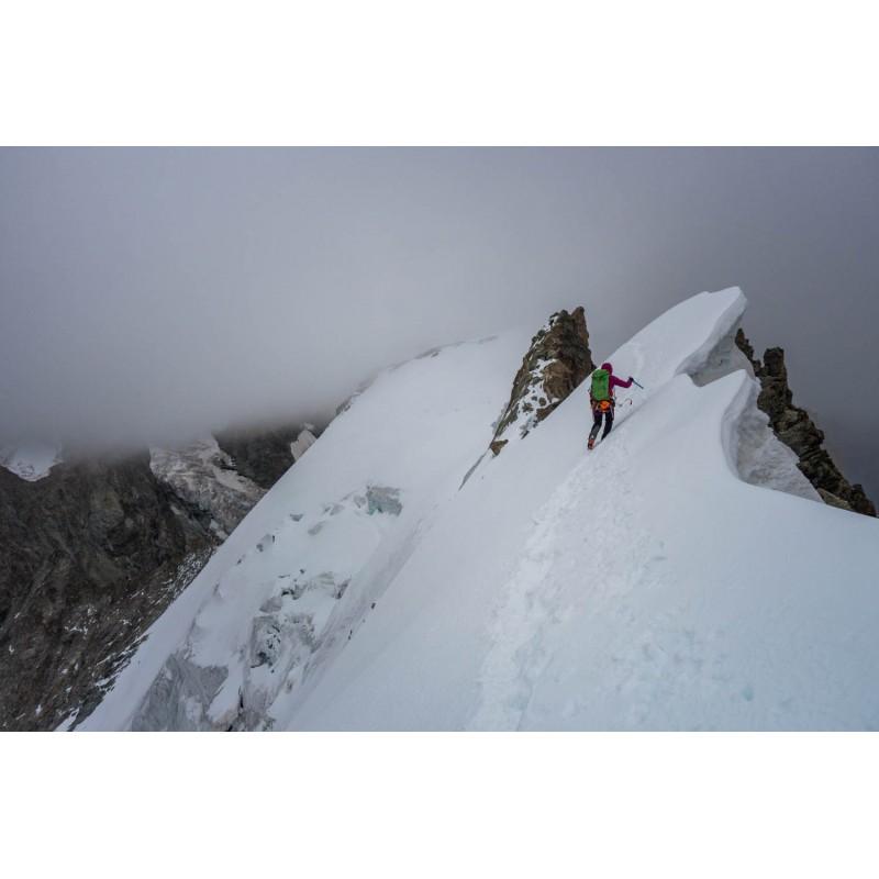 Billede 1 af Erika vedr. Petzl - Glacier Literide - Ispigge
